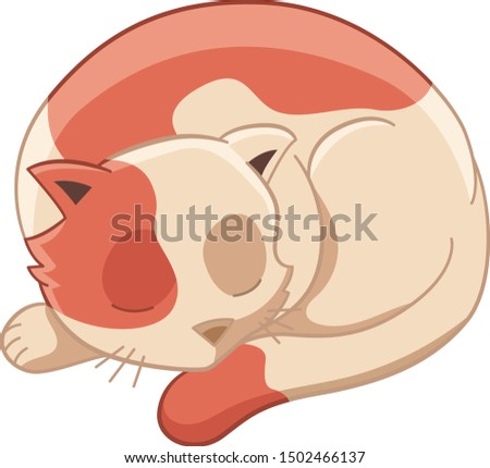sleepy cat taking a nap