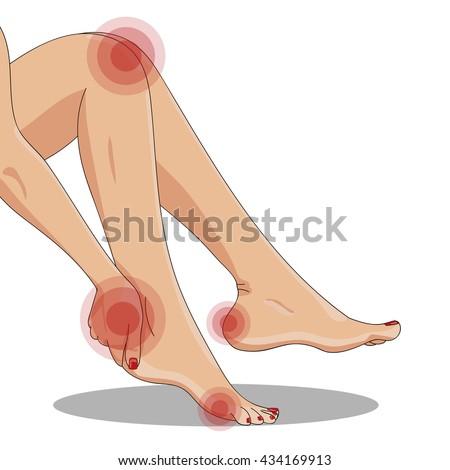 slender female legs  sitting