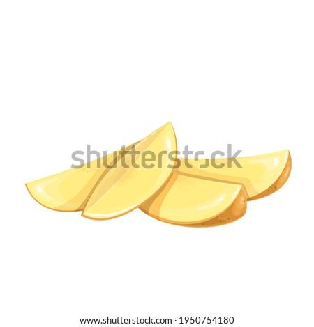 Sliced Potato, vector illustration. Raw vegetable wedges potato isolated on white background.