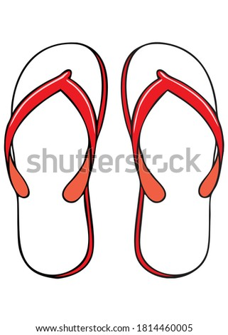 slippers vector illustration