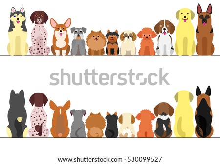 small and large dogs border set