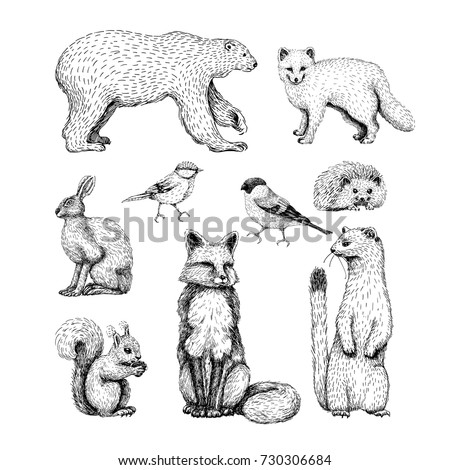 small animals drawings set on
