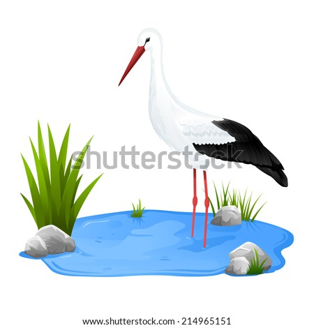 Small decorative pond with white stork staying in water, eps10 isolated