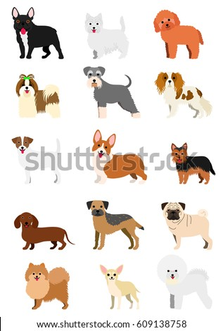 small dog breeds set