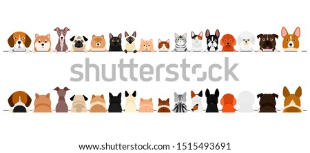 small dogs and cats border set