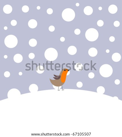 small robin bird in winter