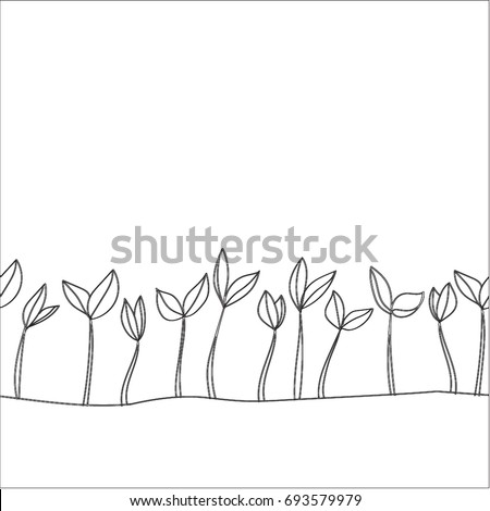 small shoots with two leaves in
