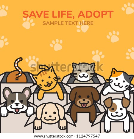 Smiling dogs and cats in cardboard box with colorful background, pet looking for home concept in outline cartoon