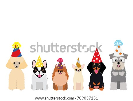 smiling small dogs with party