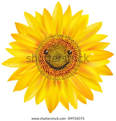 Smiling Sunflower, Isolated On White Background, Vector Illustration