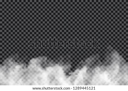 Smoke clouds on transparent background. Realistic fog or mist texture isolated on background. Transparent smoke effect. Vector