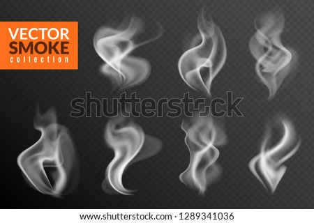 Smoke isolated. White smoking clouds hot food steam hookah tea coffee smoke steaming texture on black background vector set