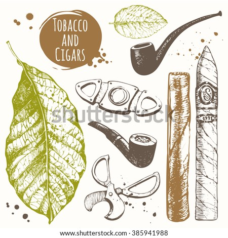 Smoking set. Cigars in sketch style. Vector illustration with pipes, guillotines, leaves of  tobacco. Classical smoking set.