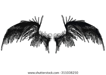smoky vector black wings