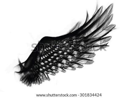 Smoky vector wings