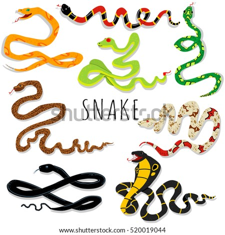 snake cartoon vector set