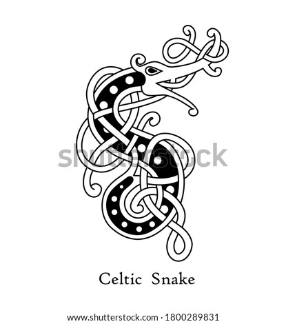 Snake - celtic style tribal pattern on black and white color. Use it for tattoo, package, logo or poster design. Stock photo ©