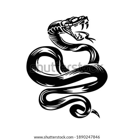 snake cobra illustration for