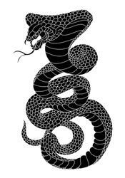 snake cobra illustration for tattoo style.
