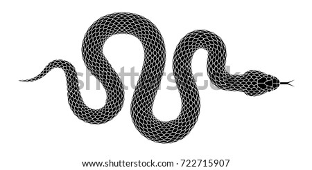 snake silhouette illustration