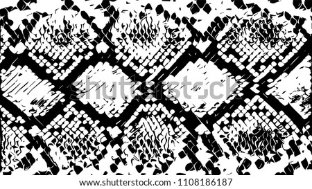 Snake skin, texture. Grunge vector background. Abstract vector illustration.  Object isolated on white