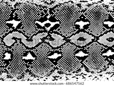 Snake skin texture.pattern black on white background. Vector illustration