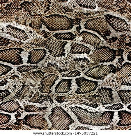 snake skin texture seamless pattern design