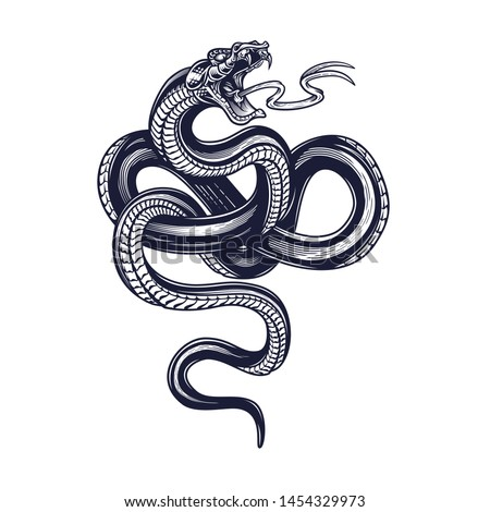 Snake. Vector hand drawn illustration of snake in engraving technique isolated on white background. Occult poster, t-shirt print, cover.