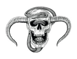 Snake with human skull hand drawing vintage engraving illustration for tattoo