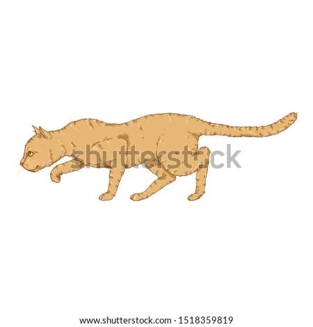 Sneaking Cat. Vector Cartoon Feline Illustration