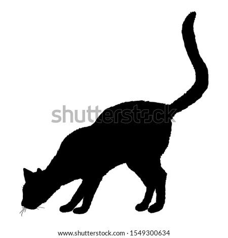 Sniffing Cat SIlhouette. Vector Black Feline Logo.