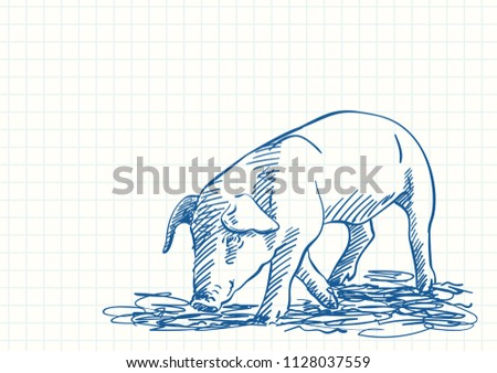 Sniffing pig, Blue pen sketch on square grid notebook page, Hand drawn vector illustration
