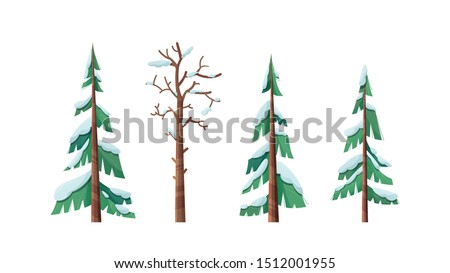 snow capped spruces flat vector