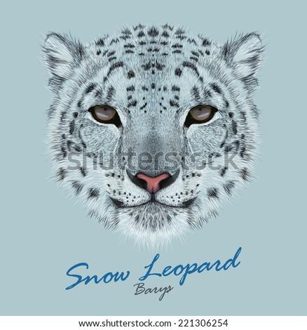 snow leopard animal cute face