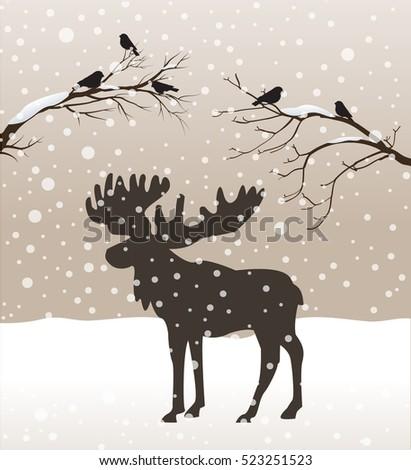 snow winter forest landscape