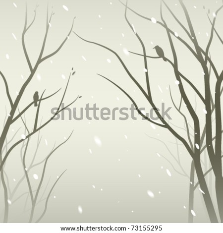 snowfall in the forest trees