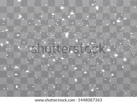 Snowfall, snowflakes in different shapes and forms. Snowflakes, snow background. Christmas snow for the new year.