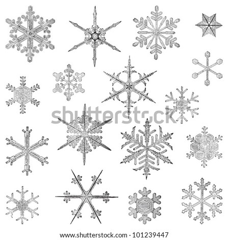 Snowflake collection / vintage illustration from Meyers Konversations-Lexikon 1897