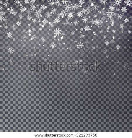 snowflake vector falling