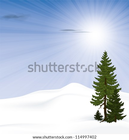snowy landscape with bright sunshine