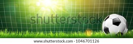 soccer ball in goal on green