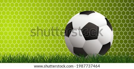 Soccer ball in goal. Soccer ball or football net. Green football grass field. Beehive raster. Honeycomb cells hexagon pattern. wk, ek sport supporters 2020, 2021, 2022 Stok fotoğraf ©