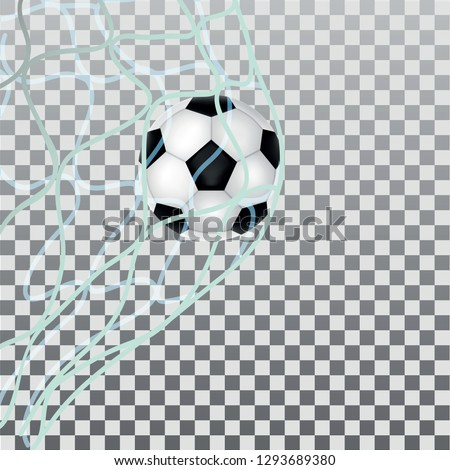 Soccer ball in the goal, vector on a transparent background