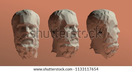 Socrates Head Vector 3D Rendering