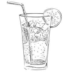 Soda glass with citrus segment and ice cubes. Hand drawing sketch vector illustration