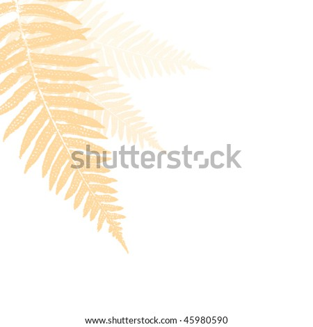 soft fern design element