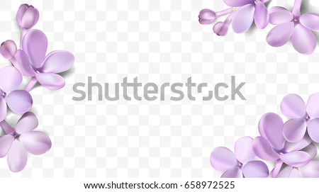 Soft pastel color floral 3d illustration on violet background. Purple Lilac flowers and petals watercolor style vector illustration template with place for text