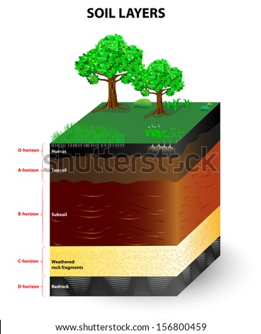 physical geography dissertation Get geography dissertation writing help from myassignmenthelpcom all our writers are expert and provides the best to overcome your dissertation help pressure.