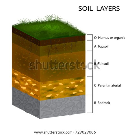 Get free stock photo of top soil texture background online for Top layer of soil