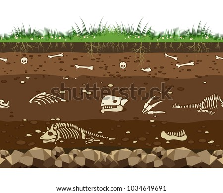 Soil with dead animals. Horizontal seamless earth underground surface with dinosaur and lizard bones vector illustration stock photo